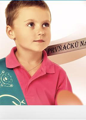 Obrázek Pasovací meče na čtenáře